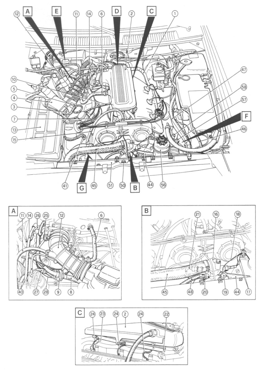Wiring Diagram Alfa Romeo Spider Smart Diagrams Wire Data Schema Gtv6 Electrical Drawing U2022 Rh G News Co 1989